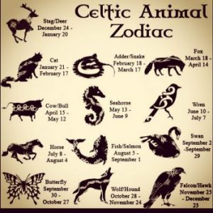 celtic animal zodiac symbols - twelve animals